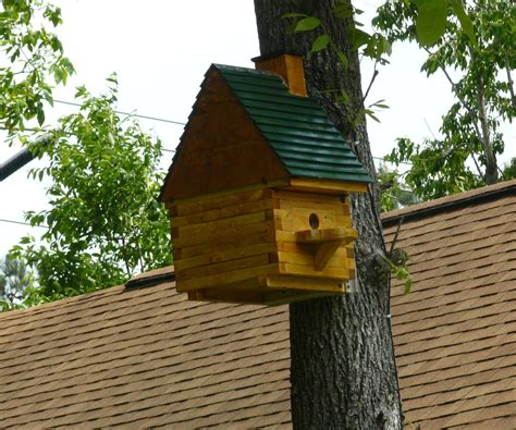 Squirrel House Designs