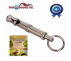 Best Stop dog barking for attention