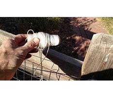 Best Stop dog from jumping