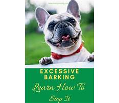 Best Stop excessive dog barking