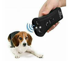 Best Stop my barking dog
