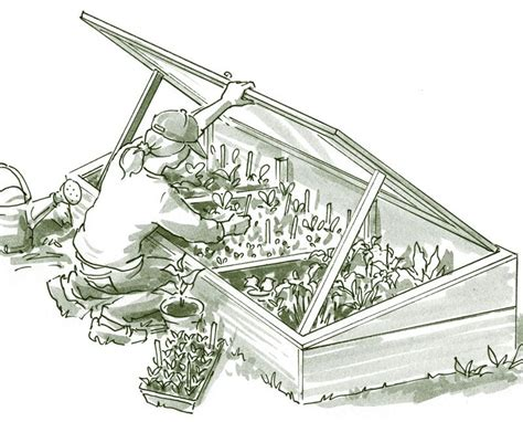 Storm-Door-Cold-Frame-Plans