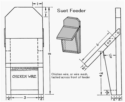 Suet Bird Feeder Plans Free