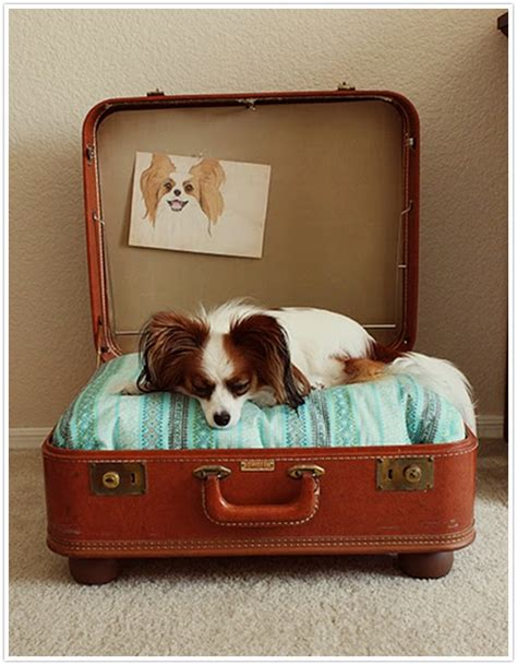 Suitcase Dog Bed Diy