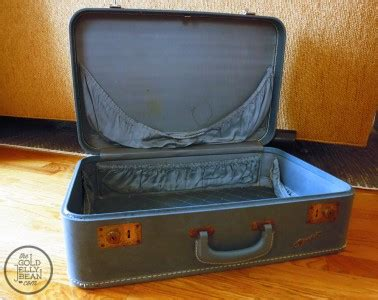 Suitcase Dog Bed Diy Egg