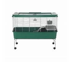 Best Super pet my habitat defined home for rabbits