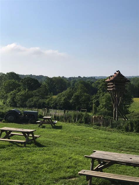 Table-Top-Farm-Forest-Row