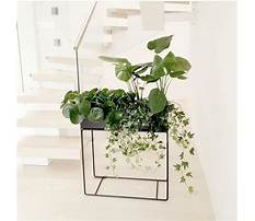 Best Tall outdoor plant stands.aspx