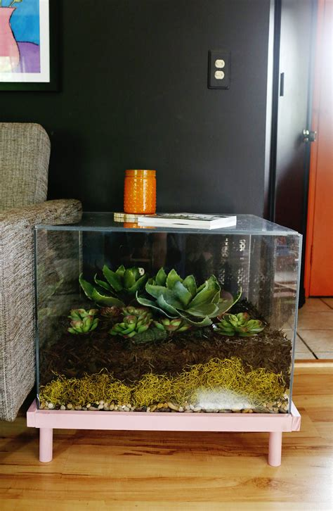 Terrarium Side Table Diy Plans