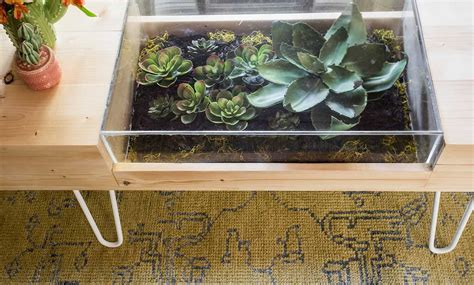 Terrarium Table Diy With Shelf