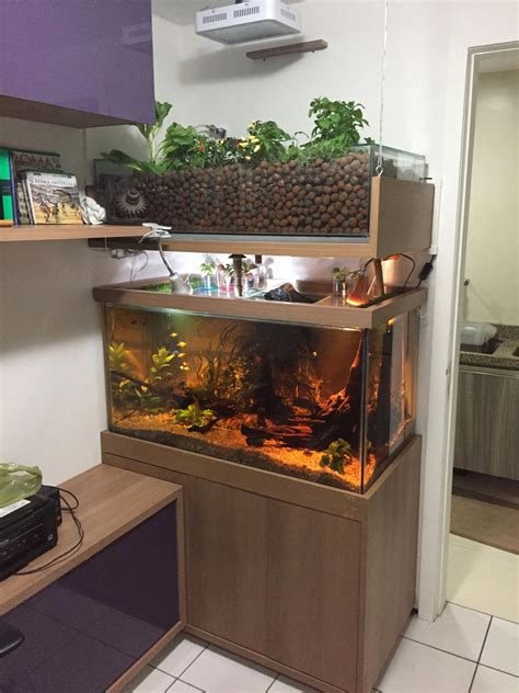 The Easiest Diy Indoor Aquaponic System