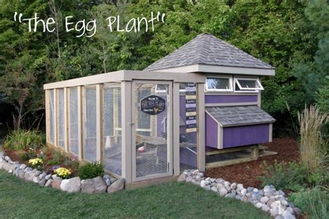 The-Eggplant-Chicken-Coop-Plans