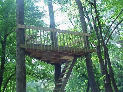 Three-Tree-Treehouse-Plans