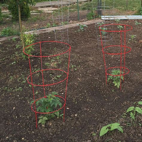 Tomato Cage Plant Markers