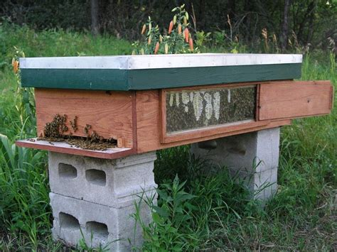 Top-Bar-Hive-Plans-With-Window