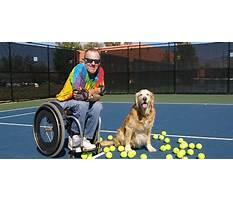 Best Top dog training videos.aspx
