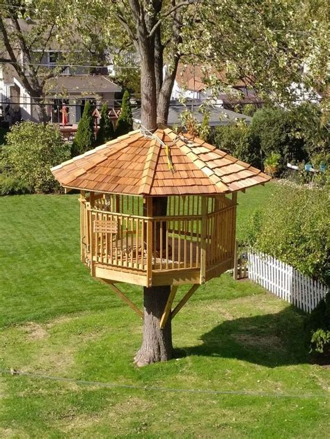 Tree House Building Plans And Kits