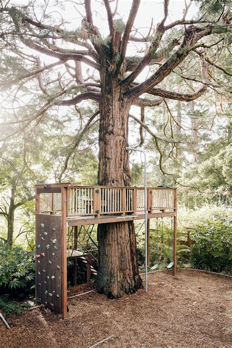 Tree House Fort Plans Backyard