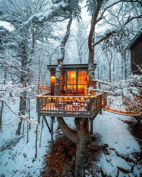Tree-Cabin-House-Plans