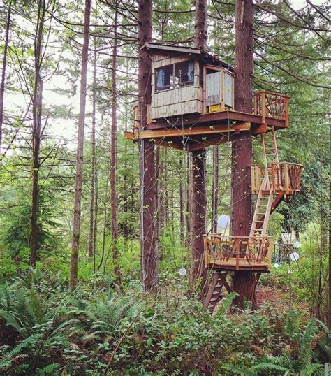 Tree-House-Deer-Stand-Plans