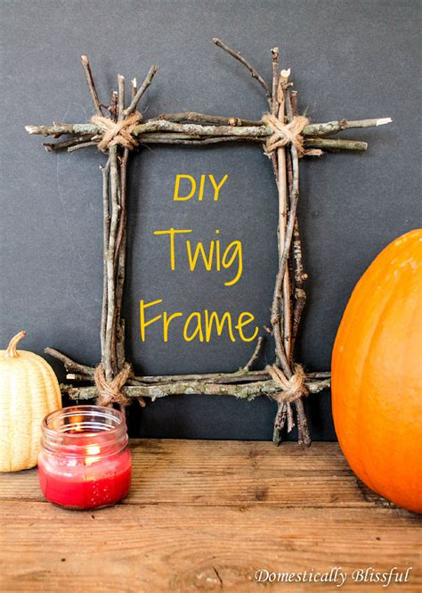 Twig Picture Frame Diy