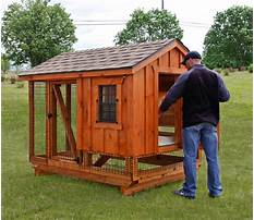 Best Used chicken coops for sale ct