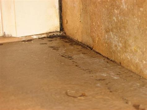 Water-Damage-Cabinet-Veneer-Diy