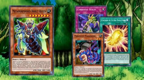 Weevil Deck Build Duel Links Characters