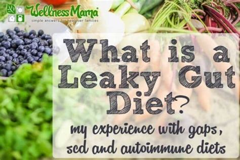 [click]what Is The Leaky Gut Diet Gaps Vs Scd  Wellness Mama.