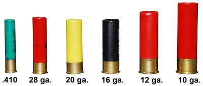 What Type Of Shotguns Shells Pack The Most Kick And Best Weapon Light For Shotgun