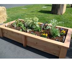 Best What are raised garden beds
