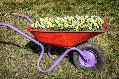 Wheelbarrow Planters Images