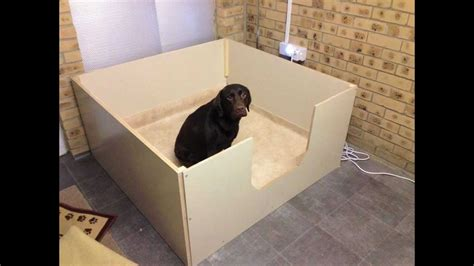 Whelping Box Plans Labrador Retriever