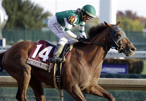When Is The Breeders Cup Horse Races And Horse Racing Results Today
