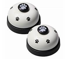 Best Which bell for dog training