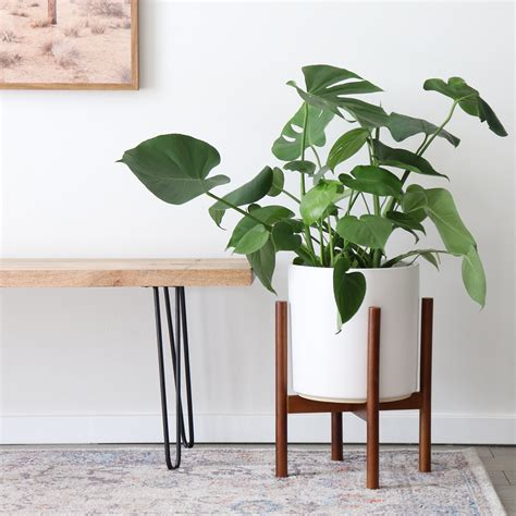 White Wood Planter Stands