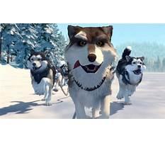 Best White fang dog training.aspx