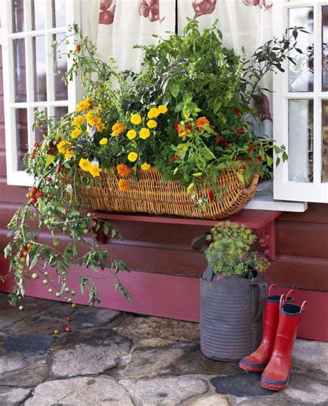 Window Box Planting Plans Veggies With Protein