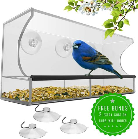 Window bird feeder suction cup amazon Image