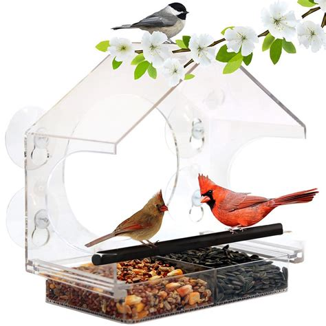 Window bird feeder with suction cups amazon Image