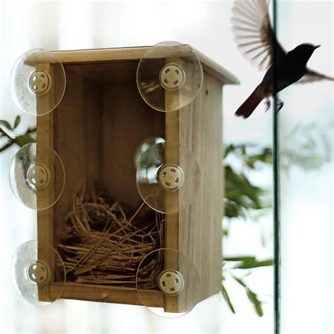Window-Bird-House-Plans