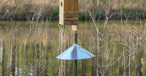 Wood Duck Box Predator Guard Plans