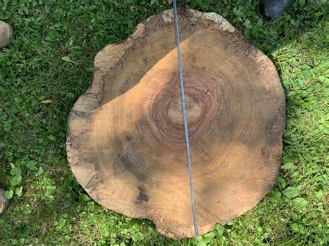 Wood Slab Countertops In Illinois