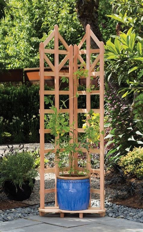 Wood Trellis Design Images