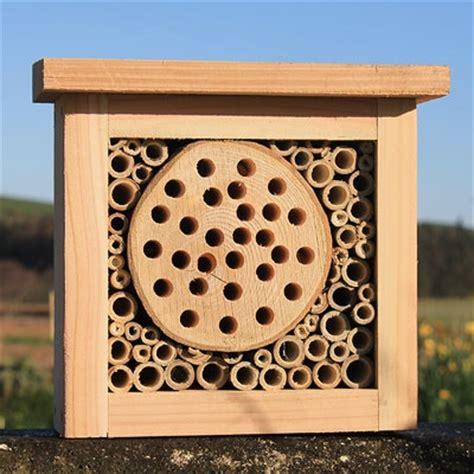 Wood-Bug-Box-Plans
