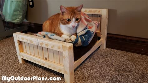Wood-Cat-Bed-Plans