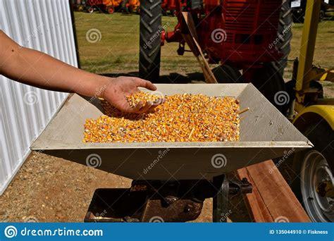Wood-Projects-Corn-Hopper