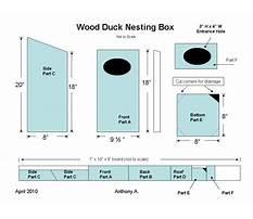 Best Wood duck box plans free