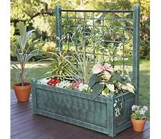 Best Wood flower box designs.aspx