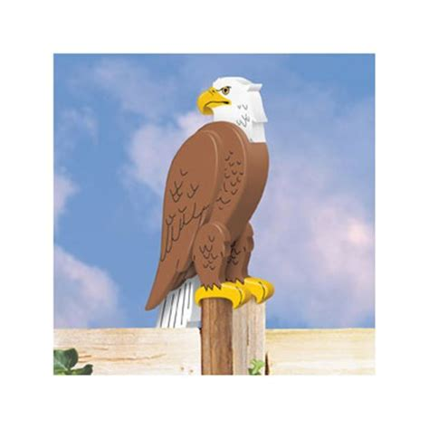 Wooden Bald Eagle Plans